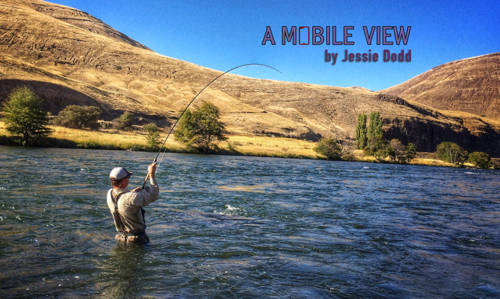 Jessie Dodd A mobile View Deschutes River