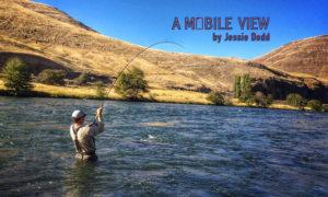 Jessie Dodd A mobile View Deschutes River
