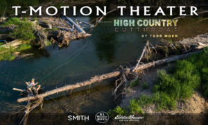 T-Motion-#54 High Country Cutthroat